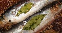Посол рыбы